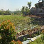 Tanah Dijual Luas 4320 Meter Cocok Buat Perumahan Dekat Kampus ITN 2 di Jalan Renang Tasikmadu Kota Malang